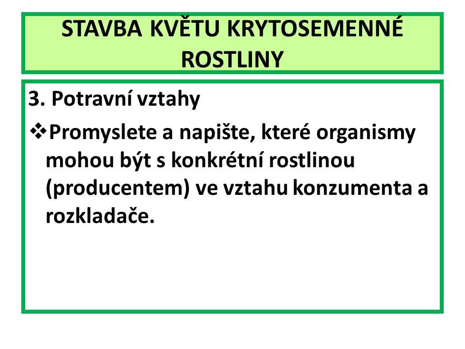 STAVBA KVĚTU KRYTOSEMENNÉ ROSTLINY 3.