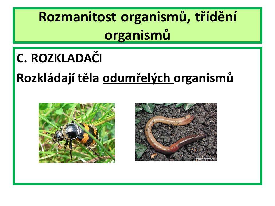 Rozmanitost organismů, třídění organismů C. ROZKLADAČI Rozkládají těla odumřelých organismů