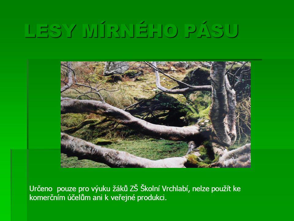 Lesy mírného pásu  Mírný podnebný pás = střídání 4 ročních období období Teplejší oblasti – listnaté a smíšené lesy Chladnější oblasti – jehličnaté lesy Skutečnost – převaha smrkových a polních monokultur, pastviny monokultur, pastviny