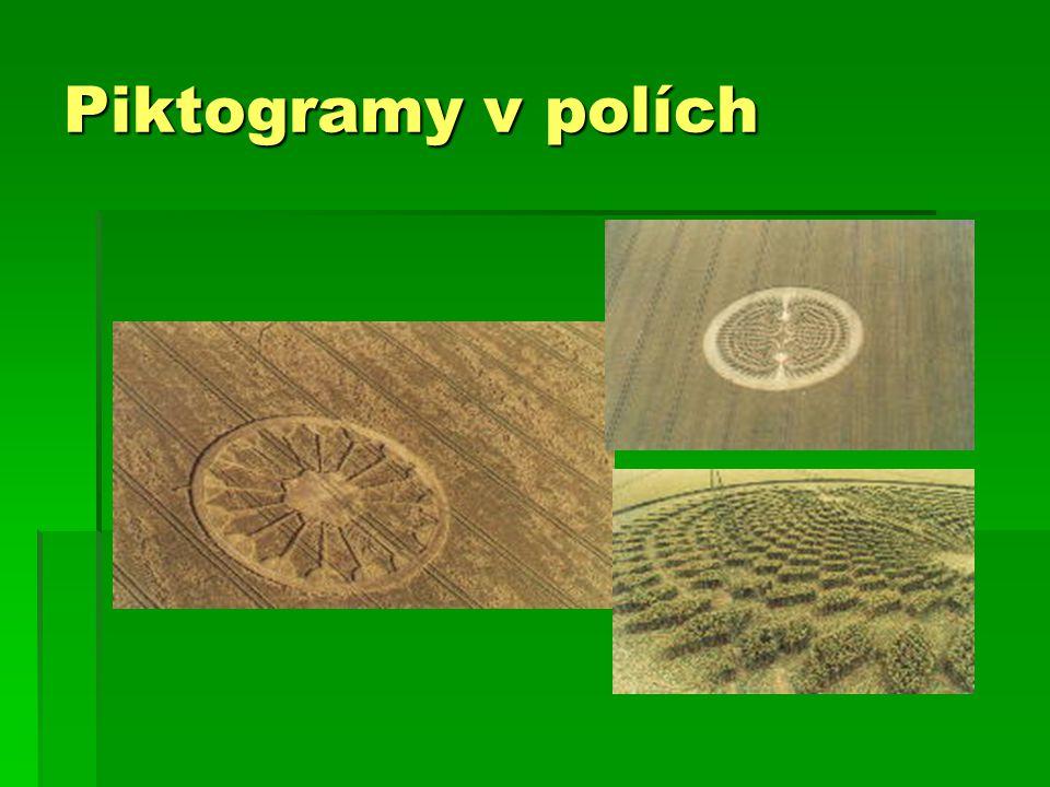 Piktogramy v polích