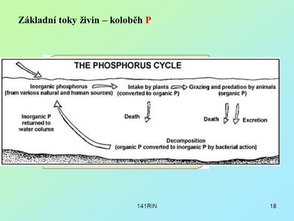 141RIN18 Základní toky živin – koloběh P
