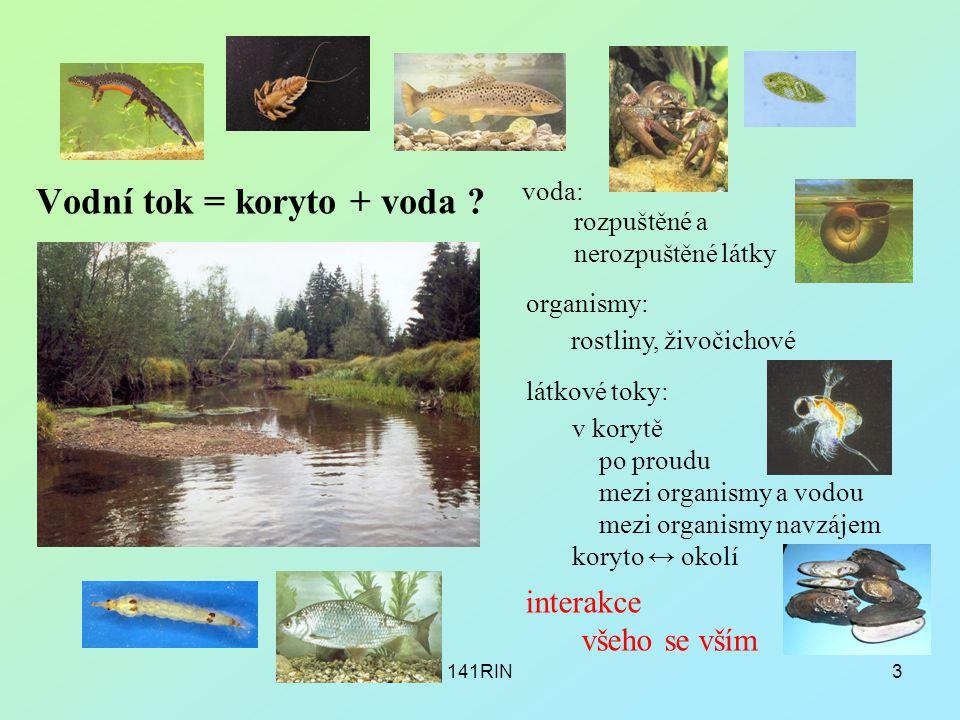 141RIN3 Vodní tok = koryto + voda ? organismy: rostliny, živočichové voda: rozpuštěné a nerozpuštěné látky látkové toky: v korytě po proudu mezi organ