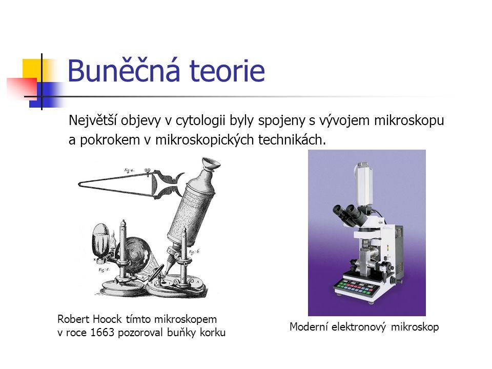 Buněčná teorie Největší objevy v cytologii byly spojeny s vývojem mikroskopu a pokrokem v mikroskopických technikách. Robert Hoock tímto mikroskopem v
