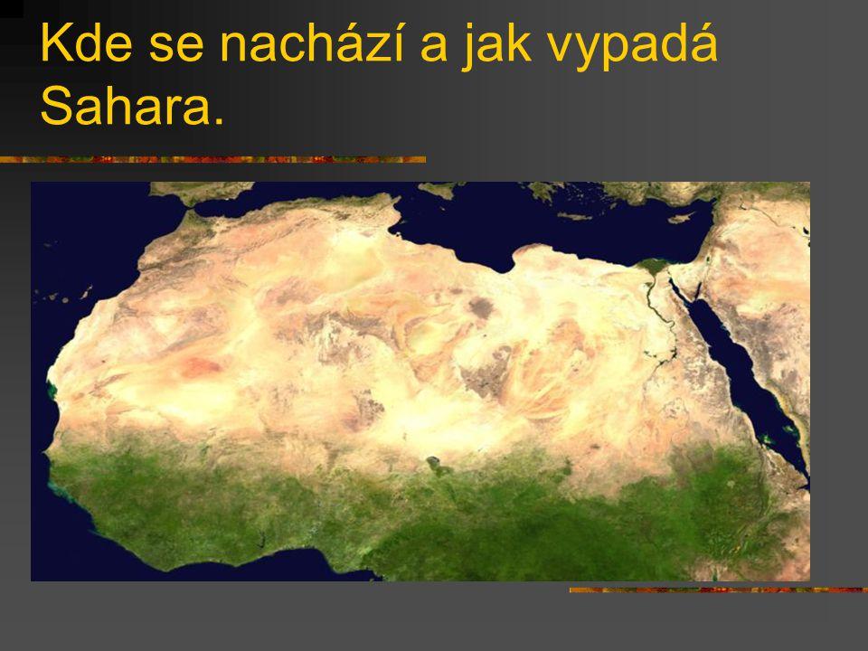 Kde se nachází a jak vypadá Sahara.