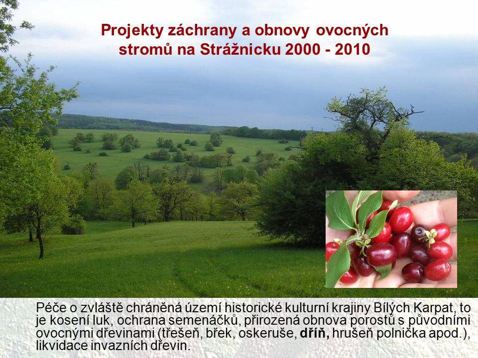 Péče o zvláště chráněná území historické kulturní krajiny Bílých Karpat, to je kosení luk, ochrana semenáčků, přirozená obnova porostů s původními ovo