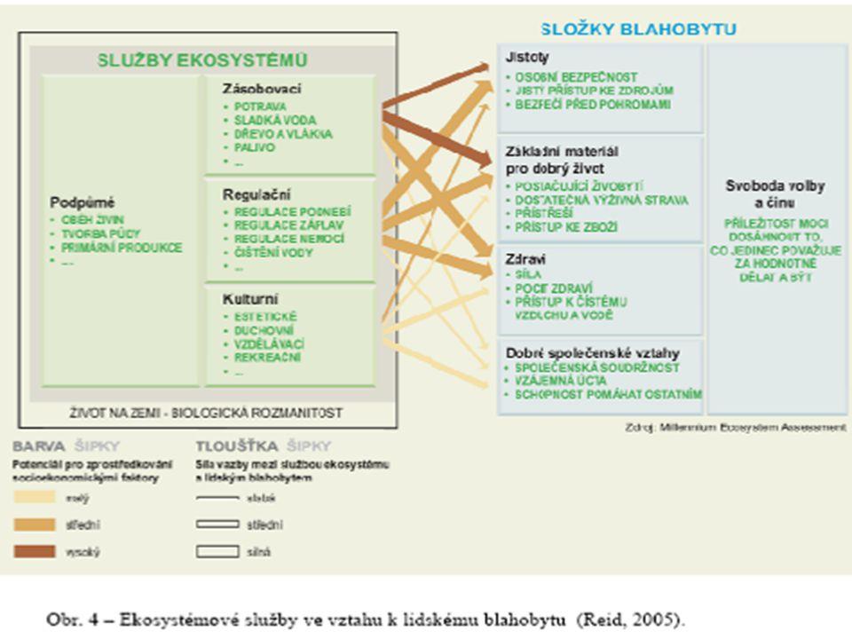 Milléniové hodnocení ekosystémů