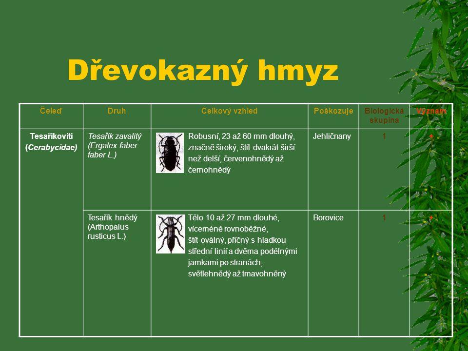 Dřevokazný hmyz ČeleďDruhCelkový vzhledPoškozujeBiologická skupina Význam Tesaříkovití (Cerabycidae) Tesařík skldišťní (phymatides testaceus L.) Ploch