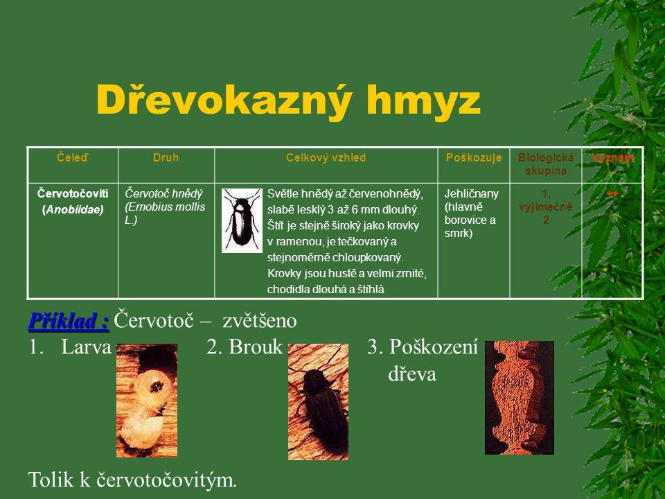Dřevokazný hmyz ČeleďDruhCelkový vzhledPoškozujeBiologická skupina Význam Tesaříkovití (Cerabycidae) Červotoč peřenitý (Ptilinus pectinicornis L.) Vál