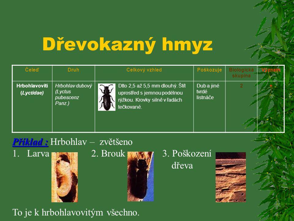 Dřevokazný hmyz ČeleďDruhCelkový vzhledPoškozujeBiologická skupina Význam Hrbohlavovití (Lyctidae) Hrbohlav parketový (Lyctus linearis Goeze) Tělo úzk
