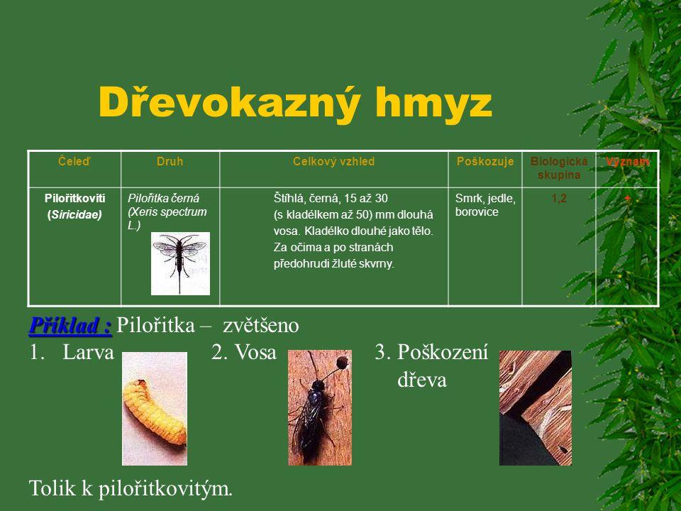 Dřevokazný hmyz ČeleďDruhCelkový vzhledPoškozujeBiologická skupina Význam Pilořitkovití (Siricidae) Pilořitka velká (Urocerus gigas L.) Statné 10 až 4