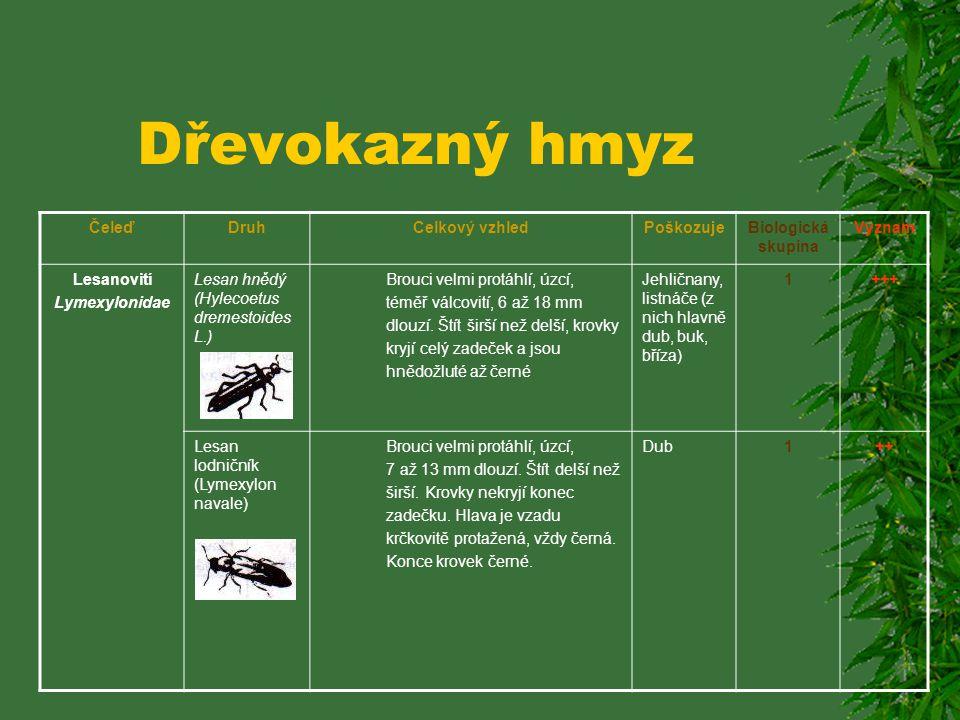 Dřevokazný hmyz ČeleďDruhCelkový vzhledPoškozujeBiologická skupina Význam Jádrovcovití (Platypodiae) Jádrohlod dubový (Platypus cylindrus F.) Válcovit