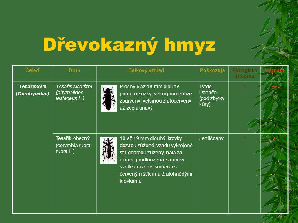 Dřevokazný hmyz ČeleďDruhCelkový vzhledPoškozujeBiologická skupina Význam Tesaříkovití (Cerabycidae) Tesařík skldišťní (phymatides testaceus L.) Plochý,6 až 18 mm dlouhý, poměrně úzký, velmi proměnlivě zbarvený, většinou žlutočervený až zcela tmavý Tvrdé listnáče (pod zbytky kůry) 1++ Tesařík obecný (corymbia rubra rubra L.) 10 až 19 mm dlouhý, krovky dozadu zúžené, vzadu vykrojené štít dopředu zúžený, hala za očima prodloužená, samičky světle červené, samečci s červeným štítem a žlutohnědými krovkami.