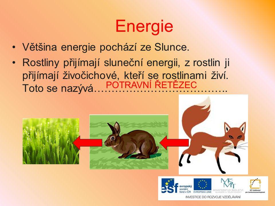 Energie Většina energie pochází ze Slunce. Rostliny přijímají sluneční energii, z rostlin ji přijímají živočichové, kteří se rostlinami živí. Toto se