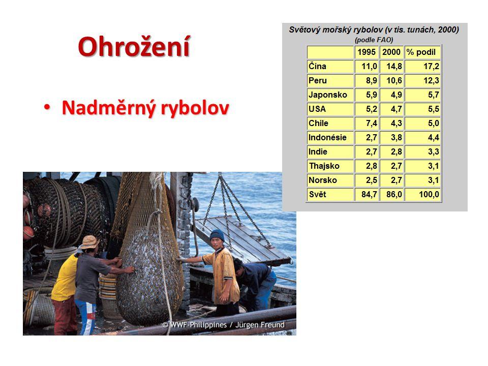 Seznam použitých zdrojů: CHALUPA, Petr; DEMEK, Jaromír; RUX, Jaromír.