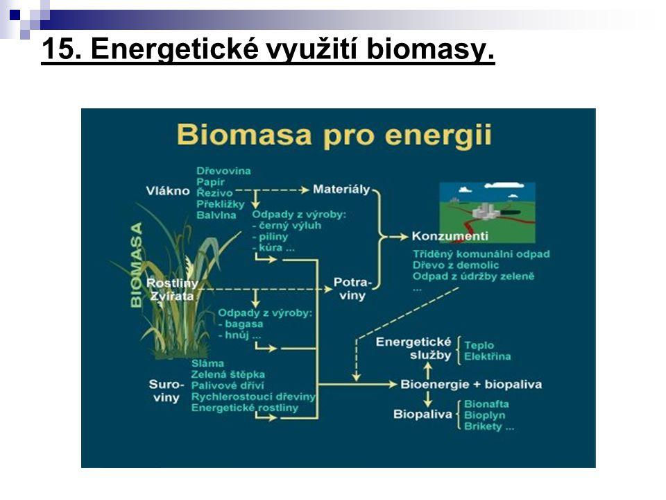 15. Energetické využití biomasy.