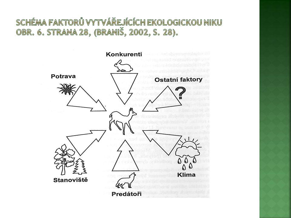  Potravní vztahy mezi organismy jsou spojeny do složitých potravních řetězců.