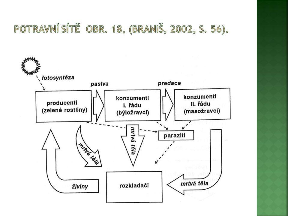 """ """"Přesun látek i energie obsažené v chemických vazbách organických látek mezi rostlinami, býložravci, masožravci a rozkladači (bateriemi, houbami, roztoči, žížalami) se nazývá potravní řetězec (BRANIŠ, 2002, s."""