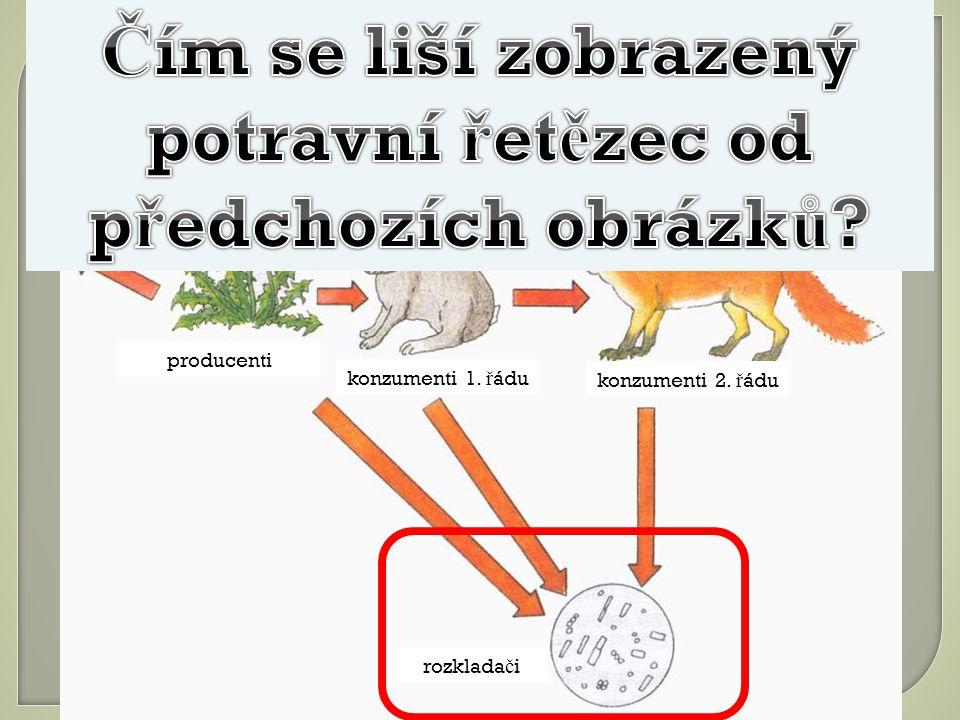 ztráty energie producenti konzumenti 1. ř ádu konzumenti 2. ř ádu rozklada č i
