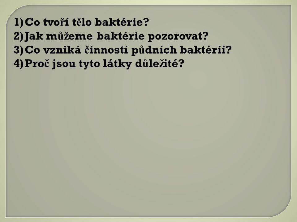 1)Co tvo ř í t ě lo baktérie.2)Jak m ůž eme baktérie pozorovat.