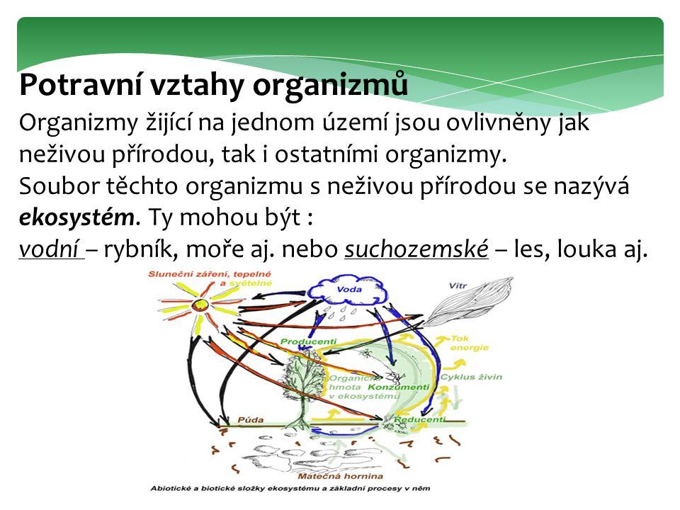 Potravní vztahy organizmů Organizmy žijící na jednom území jsou ovlivněny jak neživou přírodou, tak i ostatními organizmy. Soubor těchto organizmu s n