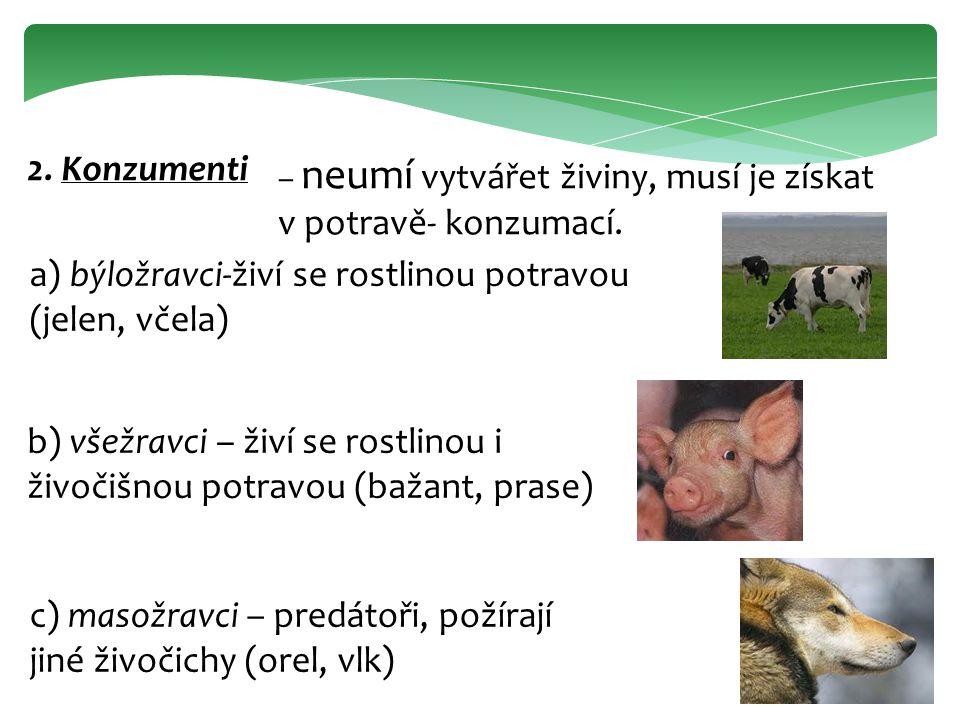 2. Konzumenti – neumí vytvářet živiny, musí je získat v potravě- konzumací. a) býložravci-živí se rostlinou potravou (jelen, včela) b) všežravci – živ