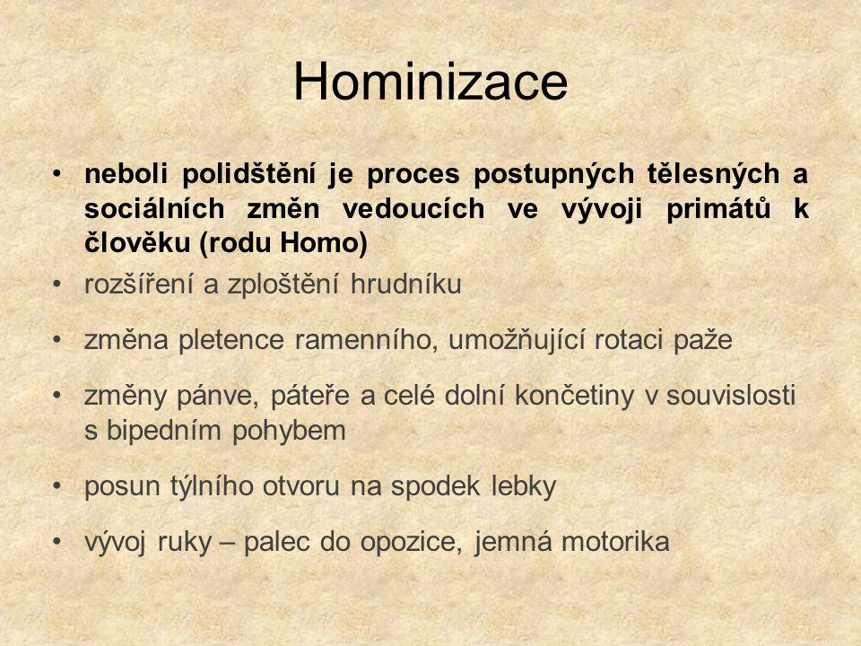 Hominizace neboli polidštění je proces postupných tělesných a sociálních změn vedoucích ve vývoji primátů k člověku (rodu Homo) rozšíření a zploštění