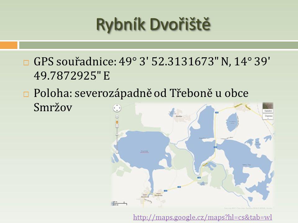 Rybník Dvořiště  GPS souřadnice: 49° 3' 52.3131673