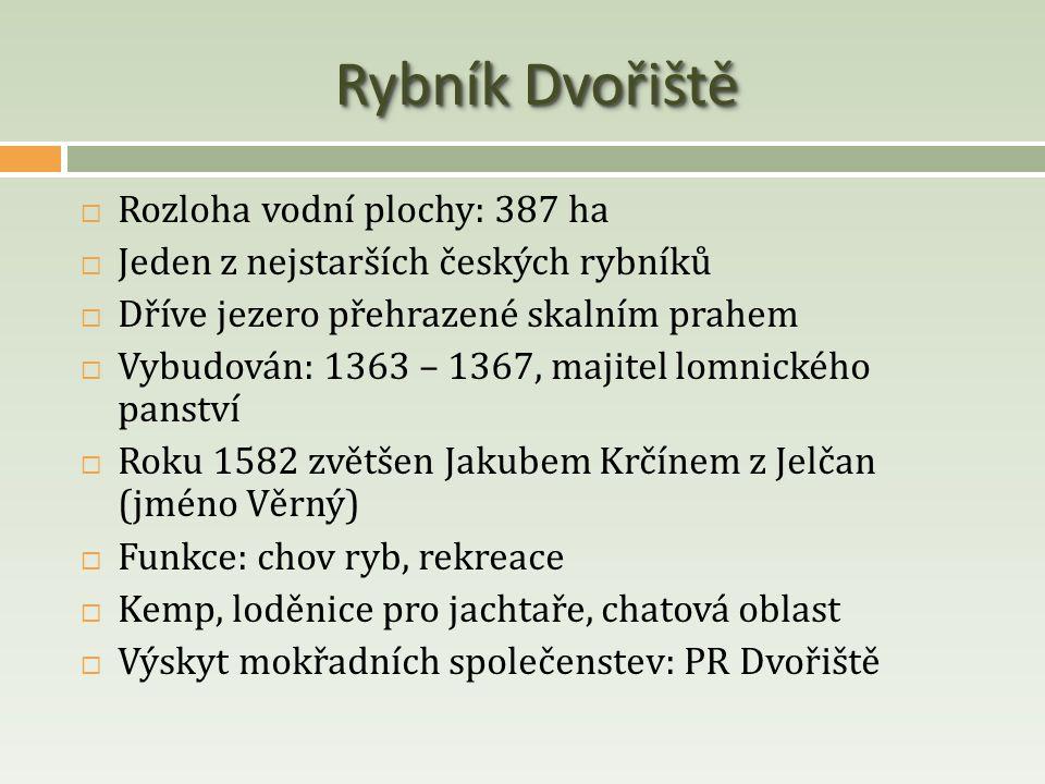 Rybník Dvořiště  Rozloha vodní plochy: 387 ha  Jeden z nejstarších českých rybníků  Dříve jezero přehrazené skalním prahem  Vybudován: 1363 – 1367
