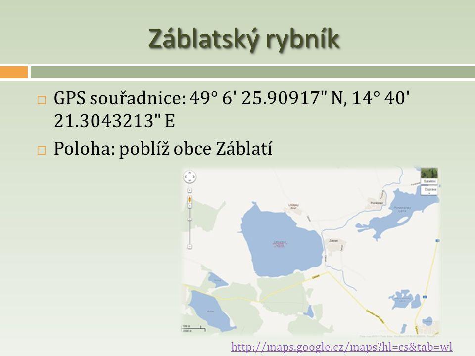 Záblatský rybník  GPS souřadnice: 49° 6' 25.90917