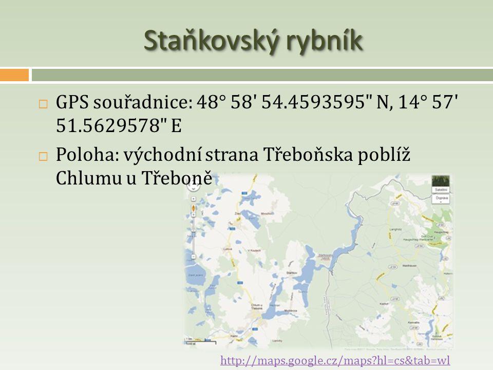 Staňkovský rybník  GPS souřadnice: 48° 58' 54.4593595