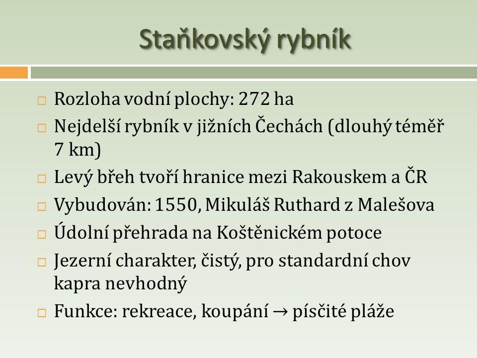 Staňkovský rybník  Rozloha vodní plochy: 272 ha  Nejdelší rybník v jižních Čechách (dlouhý téměř 7 km)  Levý břeh tvoří hranice mezi Rakouskem a ČR