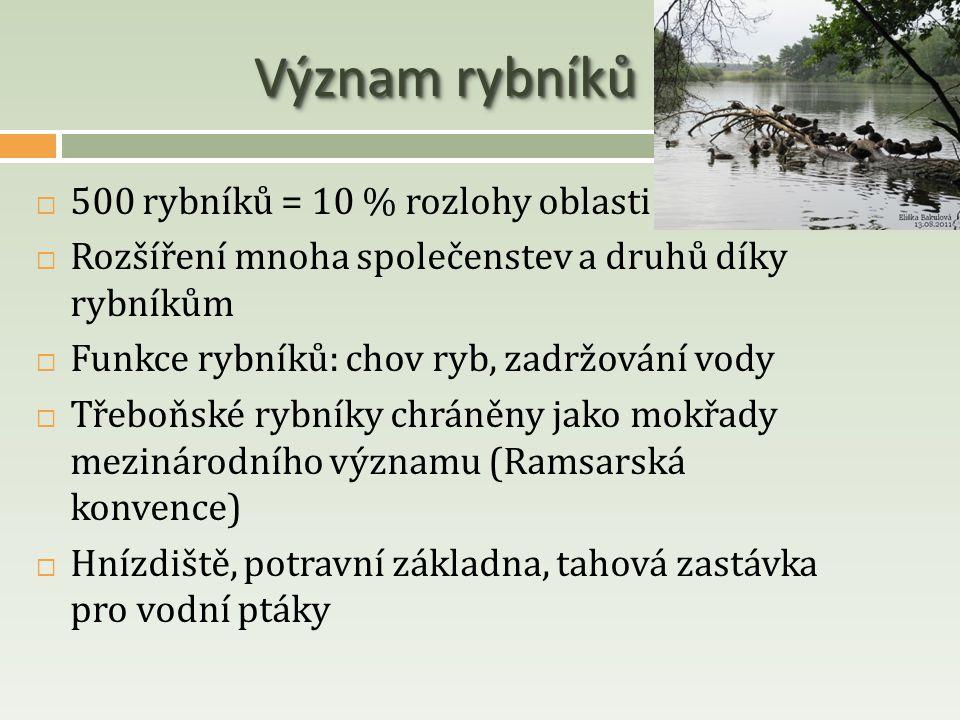 Význam rybníků  500 rybníků = 10 % rozlohy oblasti  Rozšíření mnoha společenstev a druhů díky rybníkům  Funkce rybníků: chov ryb, zadržování vody 