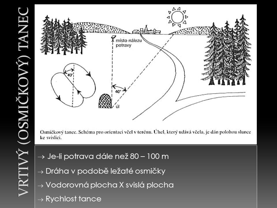  Je-li potrava dále než 80 – 100 m  Dráha v podobě ležaté osmičky  Vodorovná plocha X svislá plocha  Rychlost tance