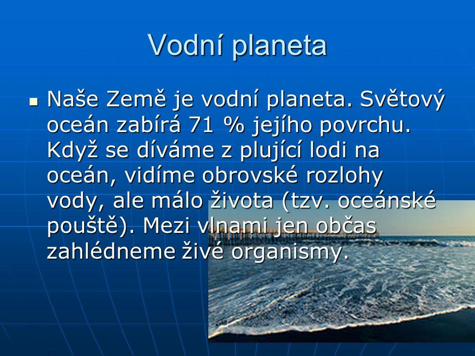 Vodní planeta Naše Země je vodní planeta. Světový oceán zabírá 71 % jejího povrchu. Když se díváme z plující lodi na oceán, vidíme obrovské rozlohy vo