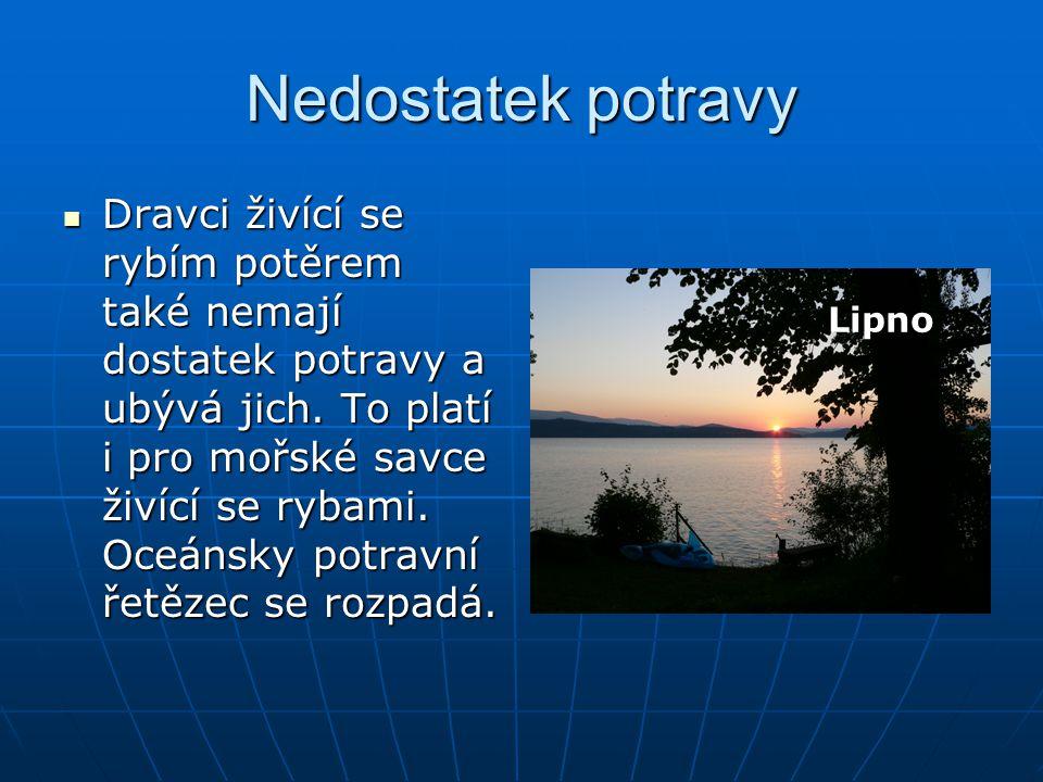 Zdroje: www.seznam.cz www.google.cz