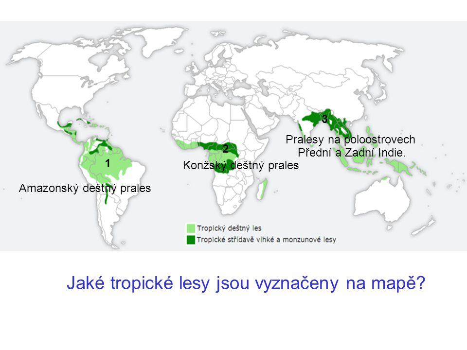 Amazonský deštný prales 1 Jaké tropické lesy jsou vyznačeny na mapě? 2 3 Konžský deštný prales Pralesy na poloostrovech Přední a Zadní Indie.