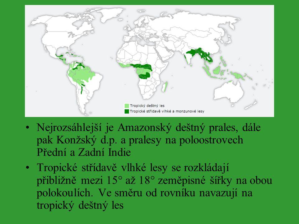 Nejrozsáhlejší je Amazonský deštný prales, dále pak Konžský d.p. a pralesy na poloostrovech Přední a Zadní Indie Tropické střídavě vlhké lesy se rozkl