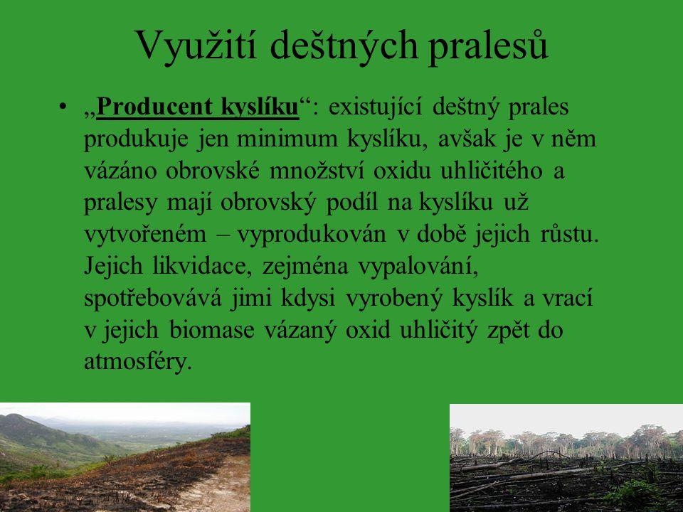 """Využití deštných pralesů """"Producent kyslíku"""": existující deštný prales produkuje jen minimum kyslíku, avšak je v něm vázáno obrovské množství oxidu uh"""