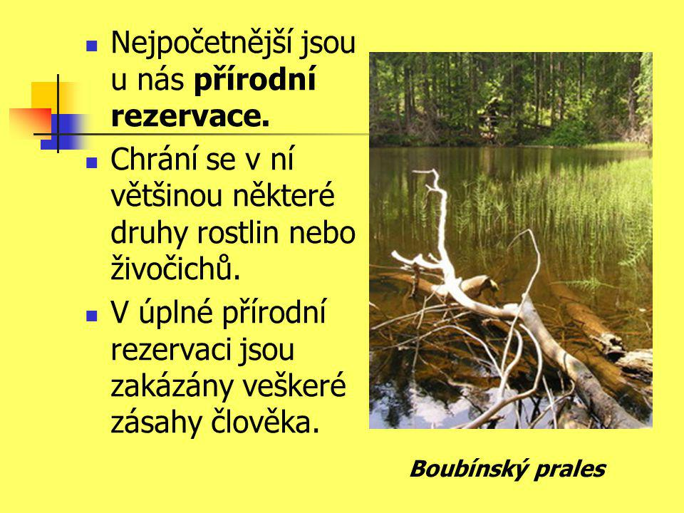Nejpočetnější jsou u nás přírodní rezervace.