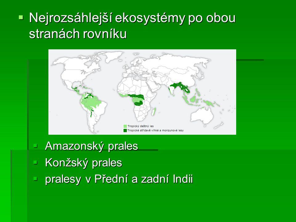 Užitkové rostliny tropických a subtropických oblastí citrusy = citroníky plodem je bobule c.