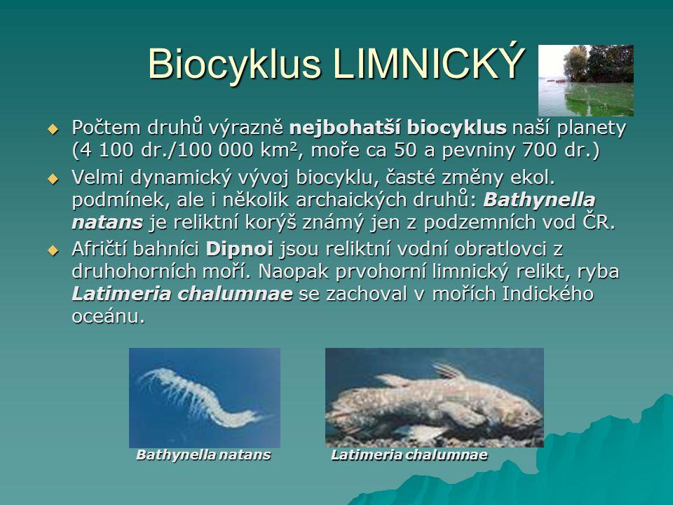 Biocyklus LIMNICKÝ  Počtem druhů výrazně nejbohatší biocyklus naší planety (4 100 dr./100 000 km 2, moře ca 50 a pevniny 700 dr.)  Velmi dynamický v