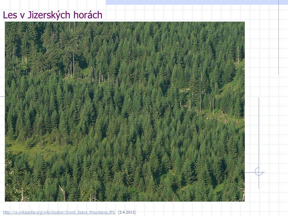 Les v Jizerských horách http://cs.wikipedia.org/wiki/Soubor:Wood_Jizera_Mountains.JPGhttp://cs.wikipedia.org/wiki/Soubor:Wood_Jizera_Mountains.JPG (2.