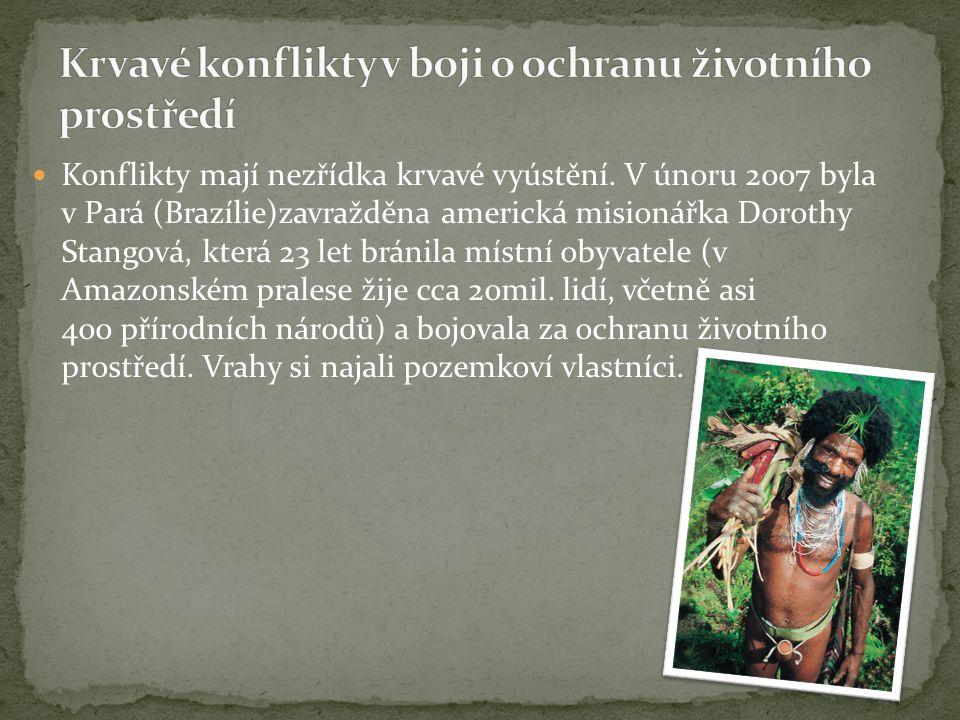 Konflikty mají nezřídka krvavé vyústění. V únoru 2007 byla v Pará (Brazílie)zavražděna americká misionářka Dorothy Stangová, která 23 let bránila míst