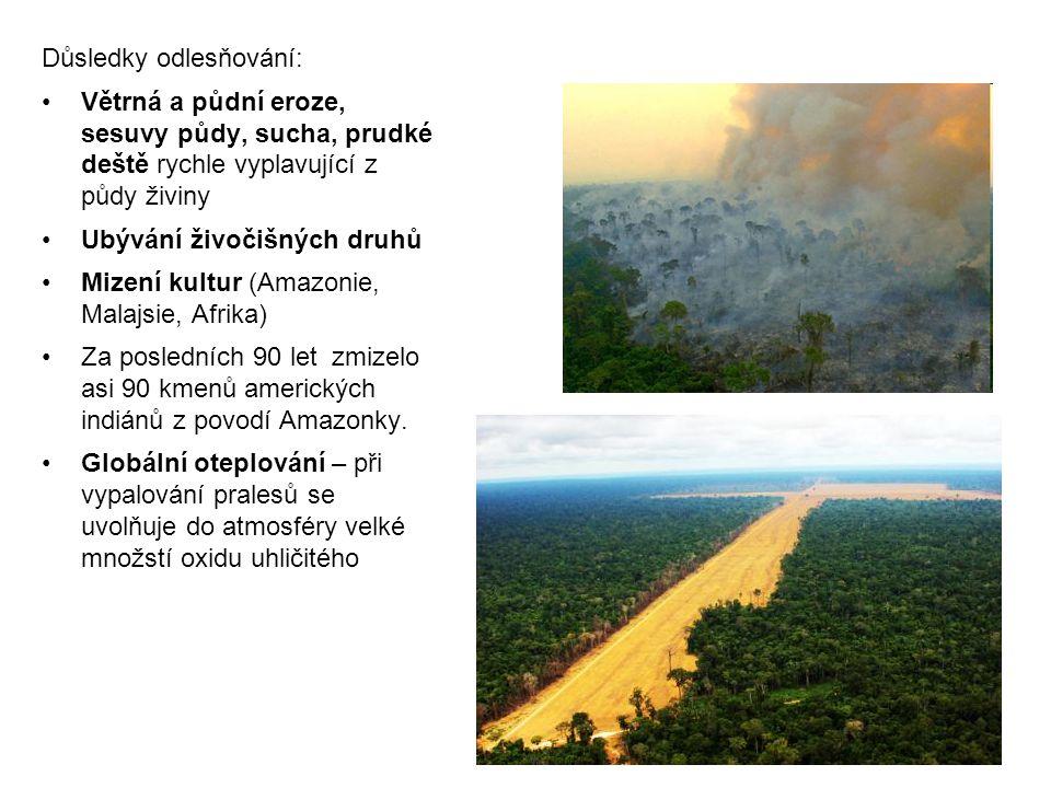 Důsledky odlesňování: Větrná a půdní eroze, sesuvy půdy, sucha, prudké deště rychle vyplavující z půdy živiny Ubývání živočišných druhů Mizení kultur