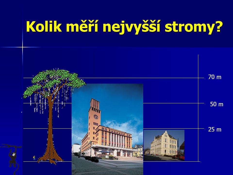 Kolik měří nejvyšší stromy? 70 m 25 m 50 m