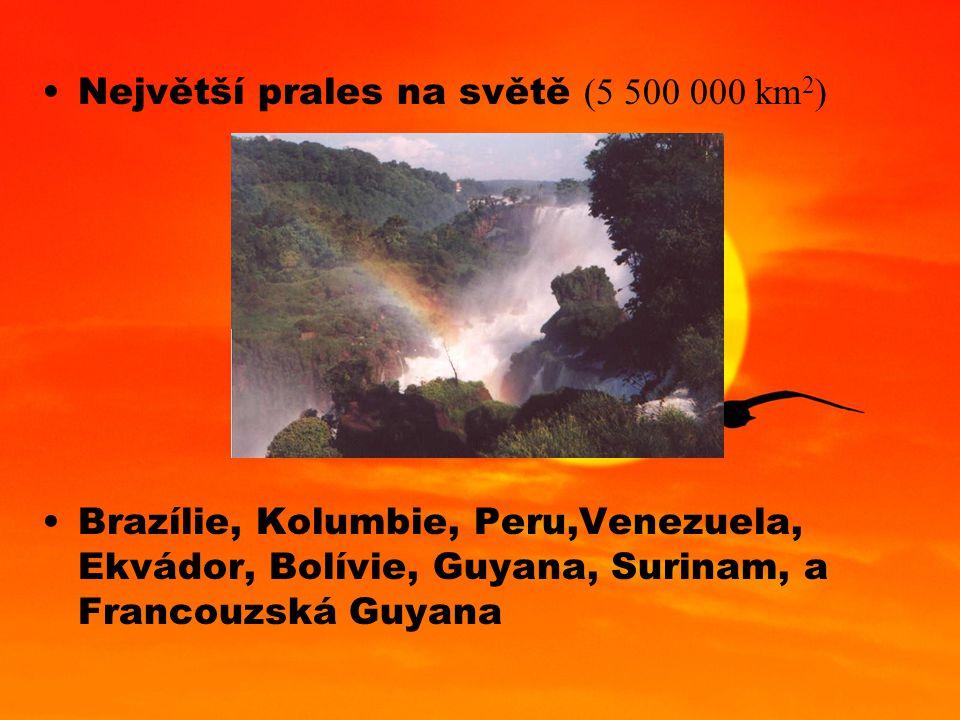 Největší prales na světě (5 500 000 km 2 ) Brazílie, Kolumbie, Peru,Venezuela, Ekvádor, Bolívie, Guyana, Surinam, a Francouzská Guyana