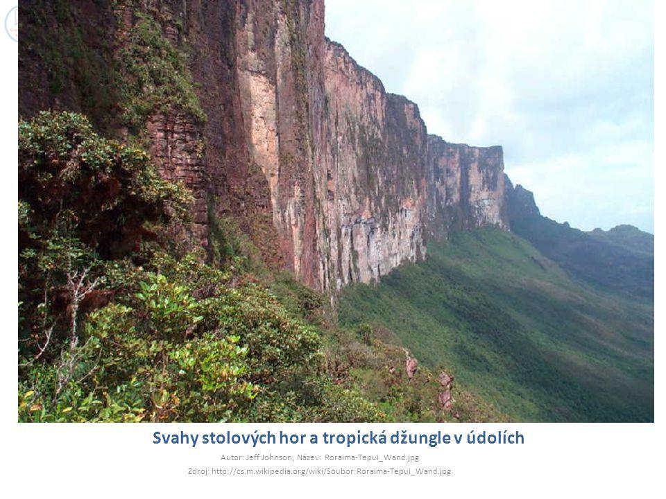 Svahy stolových hor a tropická džungle v údolích Autor: Jeff Johnson, Název: Roraima-Tepui_Wand.jpg Zdroj: http://cs.m.wikipedia.org/wiki/Soubor:Rorai