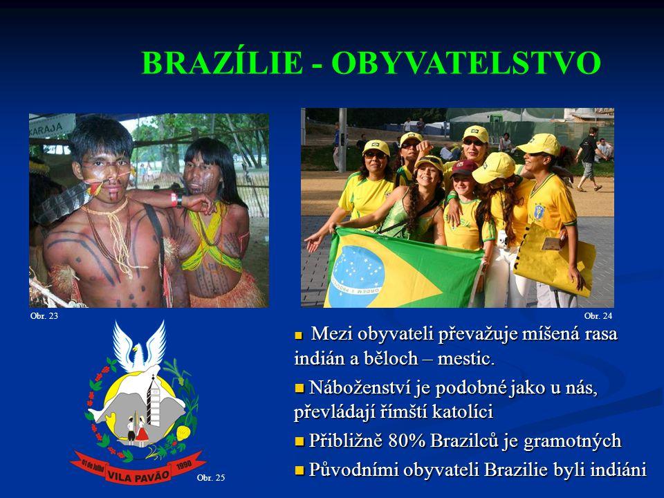 BRAZÍLIE - OBYVATELSTVO Mezi obyvateli převažuje míšená rasa indián a běloch – mestic.