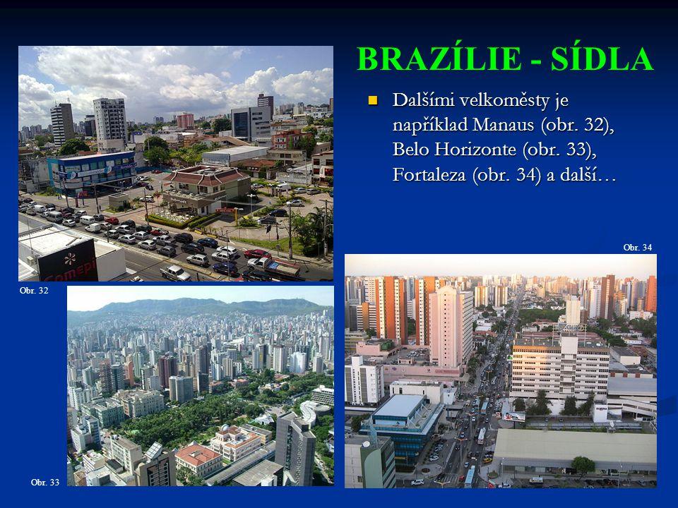 Dalšími velkoměsty je například Manaus (obr.32), Belo Horizonte (obr.