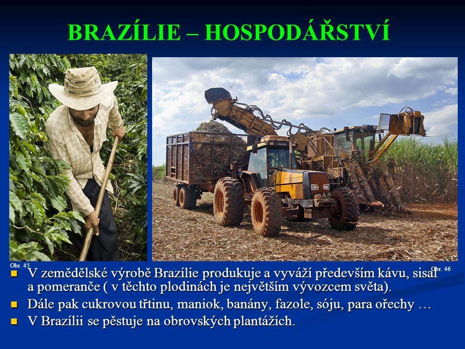 V zemědělské výrobě Brazílie produkuje a vyváží především kávu, sisal a pomeranče ( v těchto plodinách je největším vývozcem světa).
